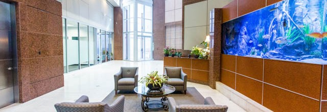Dallas Interior Real Estate Photographer: Meadow Park